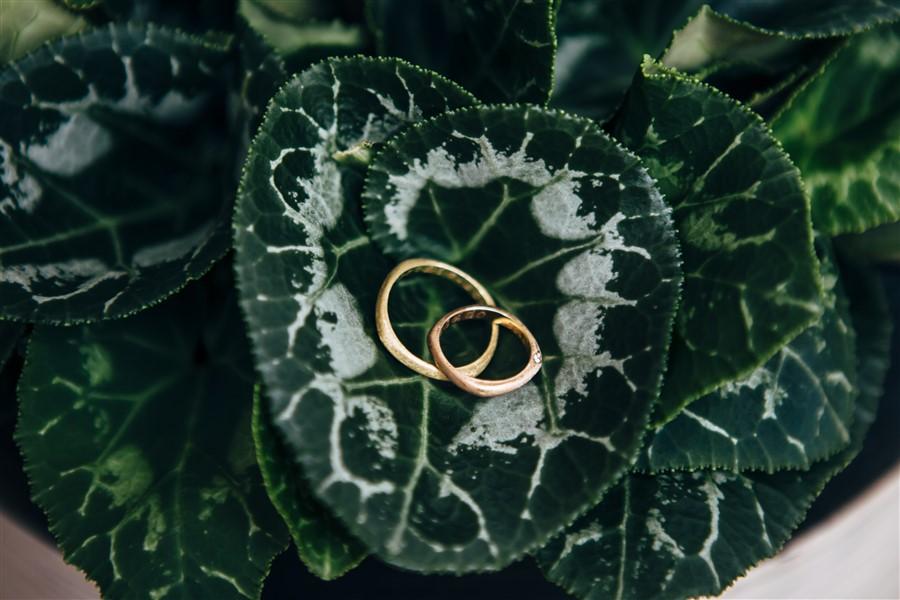 Una boda de invierno: Alianzas