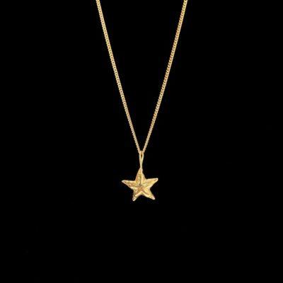 Colgante Marai de plata dorada Estrella de mar