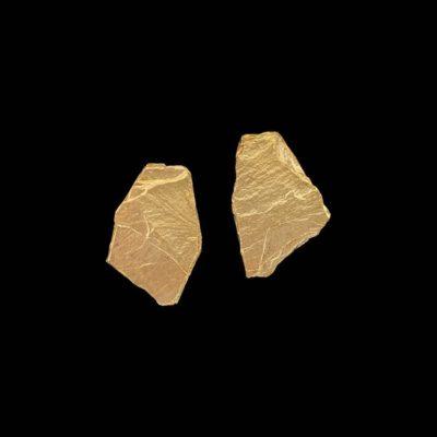 Pendientes Meteora de plata dorada Galatea